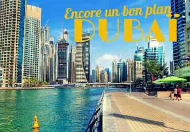 [ALERTE BON PLAN] DUBAI pour 267 € A/R par pers.
